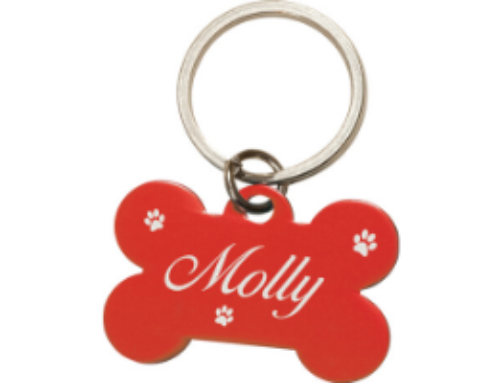 Personalizing Your Pet Accessories