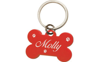 Animal Collar Tags