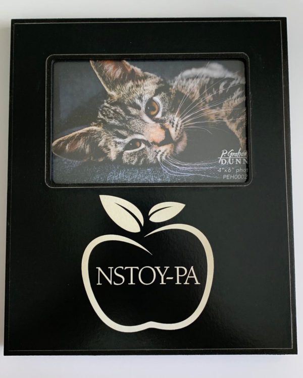 NSTOY-PA Photo Frame 1
