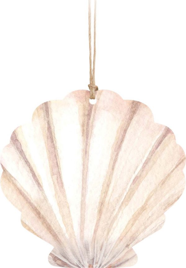 Sea Shell Hanging By String